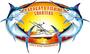 Papagayo Fishing Charters