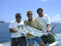 Guanacaste Roosterfish