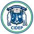 Centro Integral de Educación Privada CIDEP HIGH SCHOOL BILINGUE